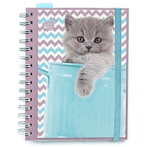 Agenda 2017 Studio Pets Cats banda elastica
