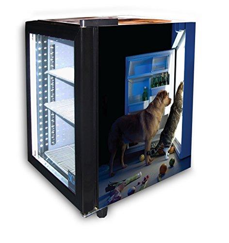 Small Glass Door Cooler for Pet Food
