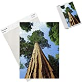 Photo Jigsaw Puzzle of Mariposa Grove of Giant Sequoia Trees from Robert Harding