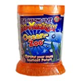 Sea Monkeys Ocean Zoo Orange