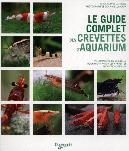 Le guide complet des crevettes d'aquarium