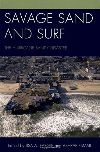 savage-sand-and-surf-the-hurricane-sandy-disaster