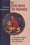 The Jews of France: A History from Antiquity to the Present. (0691090149) by Benbassa, Esther