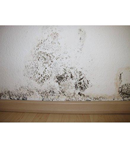 barriere-anti-humidite-20-l-blanc-mat