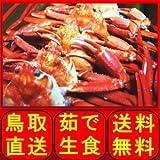 未冷凍 鳥取県産 境港産 ボイル 紅ずわい蟹 5尾 (400?490g ×5)