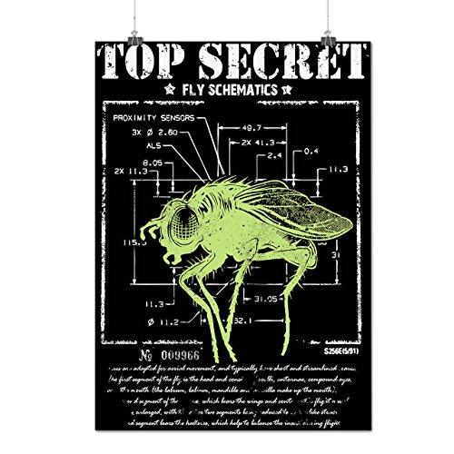 Oben-Geheimnis-Fliege-Insekt-Sensor-MattesGlnzende-Plakat-A2-60cm-x-42cm-Wellcoda