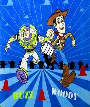 Disney Toy Story Buzz & Woody Twin / Full Micro Raschel Blanket