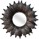 Ruhi Collections Metal Decorative Wall Mirror For Home Décor - B01FSDHDAI