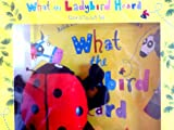 Julia Donaldson What the Ladybird Heard Book & Toy Gift Set