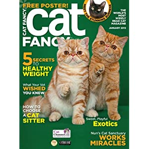 amazoncomcat fancy 1 year auto renewal magazine subscription cat fancy 300x300
