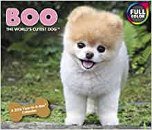 Boo The Dog Calendar  Uk
