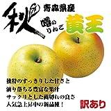 【噂のりんご】青森県産 黄王 訳あり約28~36玉入 10kg箱