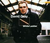 David Gray White Ladder (French Import)