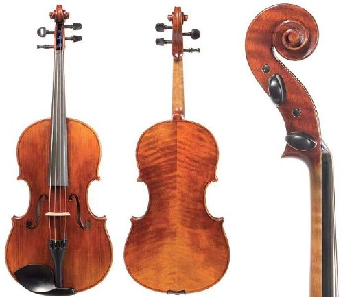 D Z Strad Model PA 800 Viola Outfit with BAM Case and D Z Strad Bow: Incredible Sound, Unmatched Quality For Discerning Players --16.5