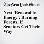 Next 'Renewable Energy': Burning Forests, If Senators Get Their Way | Eduardo Porter