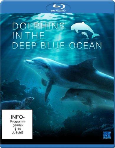 Дельфины в океанской синеве / Dolphins In The Deep Blue Ocean (2009) HQRip