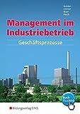 Image de Management im Industriebetrieb. Band 1: Geschäftsprozesse