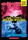 Raven Hill Mysteries 1 And 2 (Turtleback School & Library Binding Edition) (1417728604) by Rodda, Emily