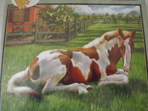 Painted Poney by Nancy Tiles, 500 pc