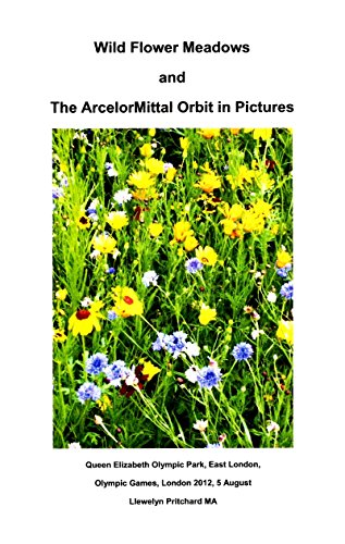 wild-flower-meadows-and-the-arcelormittal-orbit-in-pictures-photo-albums-book-18-afrikaans-edition
