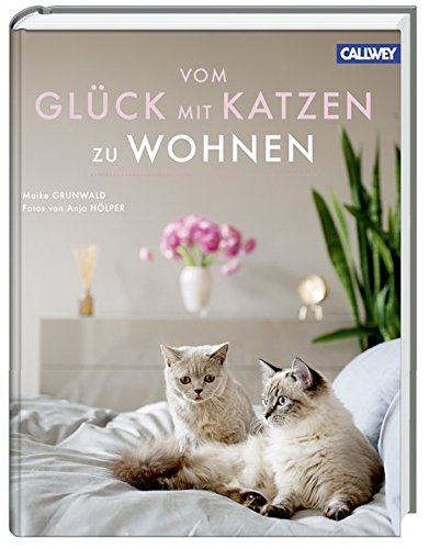 katzen f r die wohnung was. Black Bedroom Furniture Sets. Home Design Ideas