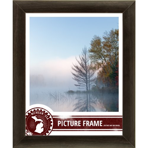Craig Frames 23247778 24 by 32-Inch Picture Frame, Smooth Wrap Finish, 1-Inch Wide, Brazilian Walnut Brown (Poster Frame 32 X 24 compare prices)