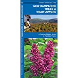 New Hampshire Trees & Wildflowers: A Folding Pocket Guide to Familiar Species (Pocket Naturalist Guide Series)