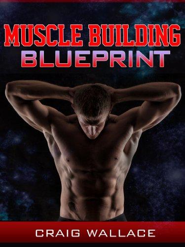 Muscle Building Blueprint