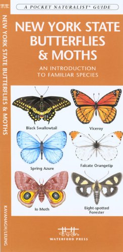 New York State Butterflies & Moths: An Introduction to Familiar Species (State Nature Guides)