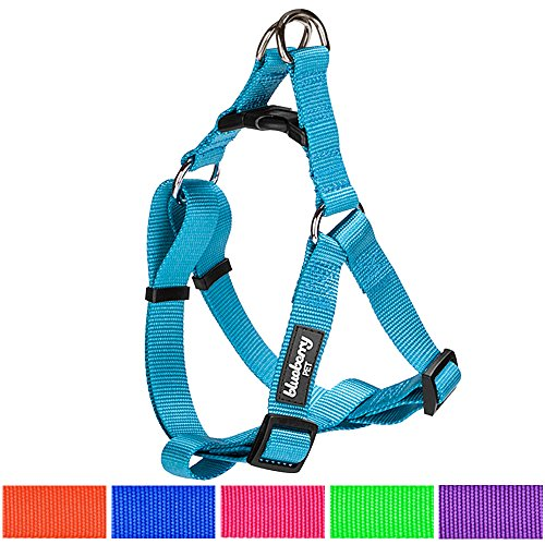 Blueberry Pet Step-in Harnesses, Chest Girth 19.5