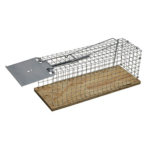 moorlandr-lebend-falle-fur-ratten-28x9x9-cm-mit-einem-eingang-ohne-scharfe-kanten-ideal-fur-innen-un