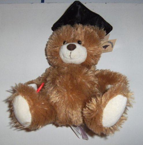 """8"""" Grad Bear Plush Toy (T-Shirt Not Included) front-534763"""