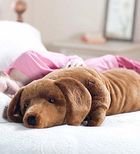 Dachshund Body Pillow Best Buy!   EatSmart us5