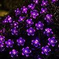 Innoo Tech Solar String Fairy Lights 50 Flower Led Outdoor Garden Lights for Patio-Purple