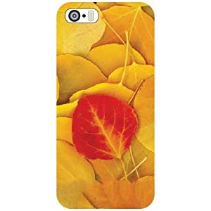 Apple iPhone 5S Back Cover - Eye Candy Designer Cases