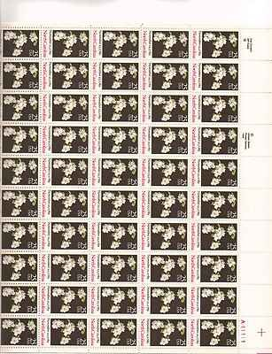North Carolina Sheet of 50 x 25 Cent US Postage Stamps NEW Scot 2347