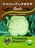 51vyjUyuNsL. SL160  Organic Snowball Improved Cauliflower Seeds