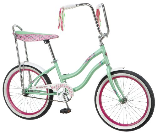 Discounted Schwinn 24 Inch Bikes For Girls Amazon com Schwinn Girl s