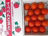高知産てっぺんトマト約1kg夏のフルーツトマト