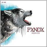 Sangre Fria CD+DVD