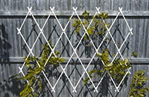 Achla Designs Lattice Trellis, Wall Mounted (Discontinued by Manufacturer)