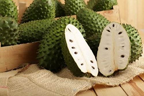 pictures of healthy fruits guanabana fruit
