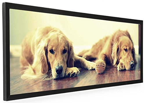 40 x 13.5 Panoramic Photo Frame for Wall Mount Use, 1-inch Profile, Aluminum (Black) (Aluminum Pictures compare prices)