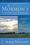 img - for A Mormon's Unexpected Journey Volume 1: Finding the Grace I Never Knew book / textbook / text book