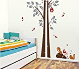 Decals Arts Baby Nursery Classroom Squirrel Stickers Wall Sticker