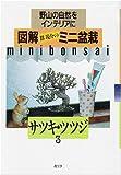 サツキ・ツツジ (図解 群境介のミニ盆栽―野山の自然をインテリアに)