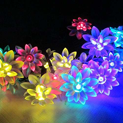 5M 20 Led Solar Powered Garden Fairy Lights Double Lotus Colorful Led String Light For Outdoor Patio Holiday Christmas Party Wedding