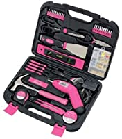 Apollo Precision Tools 135-Piece Pink Tool Kit - Lesbian Gift