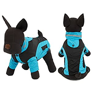 Amazon.com: BeesClover Pet Dog Cat Coats Dog Clothing Windproof