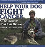 Help Your Dog Fight Cancer: An Overview Of Home Care Options
